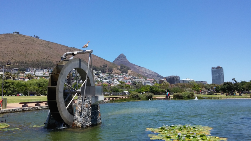 Green point 19